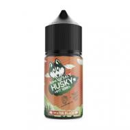 Жидкость Husky Mint Series STRONG Salt - Water Place 30мл/20мг